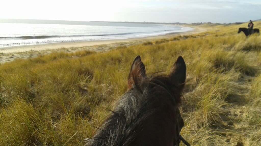 Morning Beach Ride in Wicklow