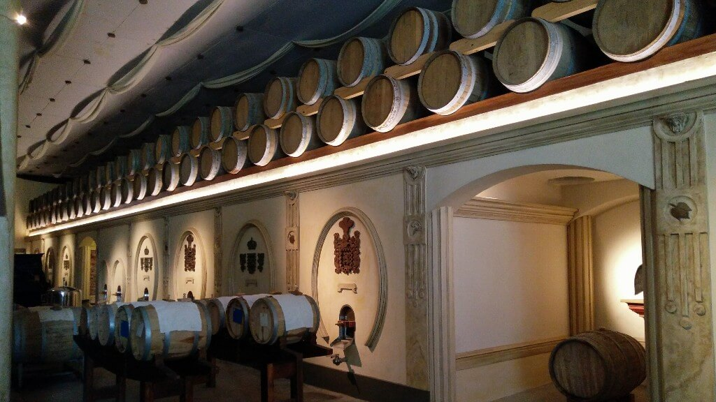 Day trip from Mendoza: the wineries