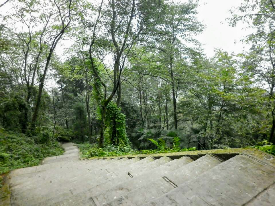 Steps up the Emei Shan mountain in China