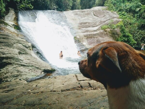 Dipping into waterfalls in Penedo