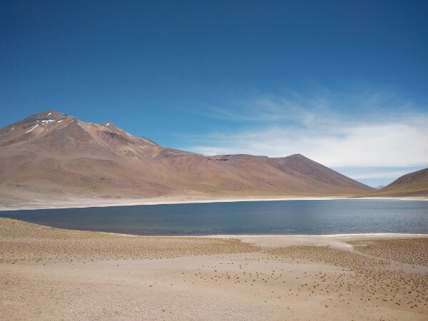 Altiplanico - Highlands of Atacama desert, Chile