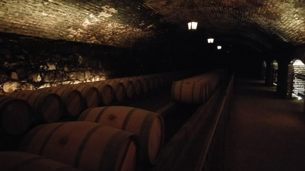 Day trip from Santiago: Wineryvisit