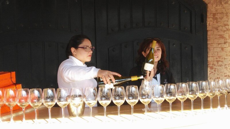 Visiting Chilean wineries